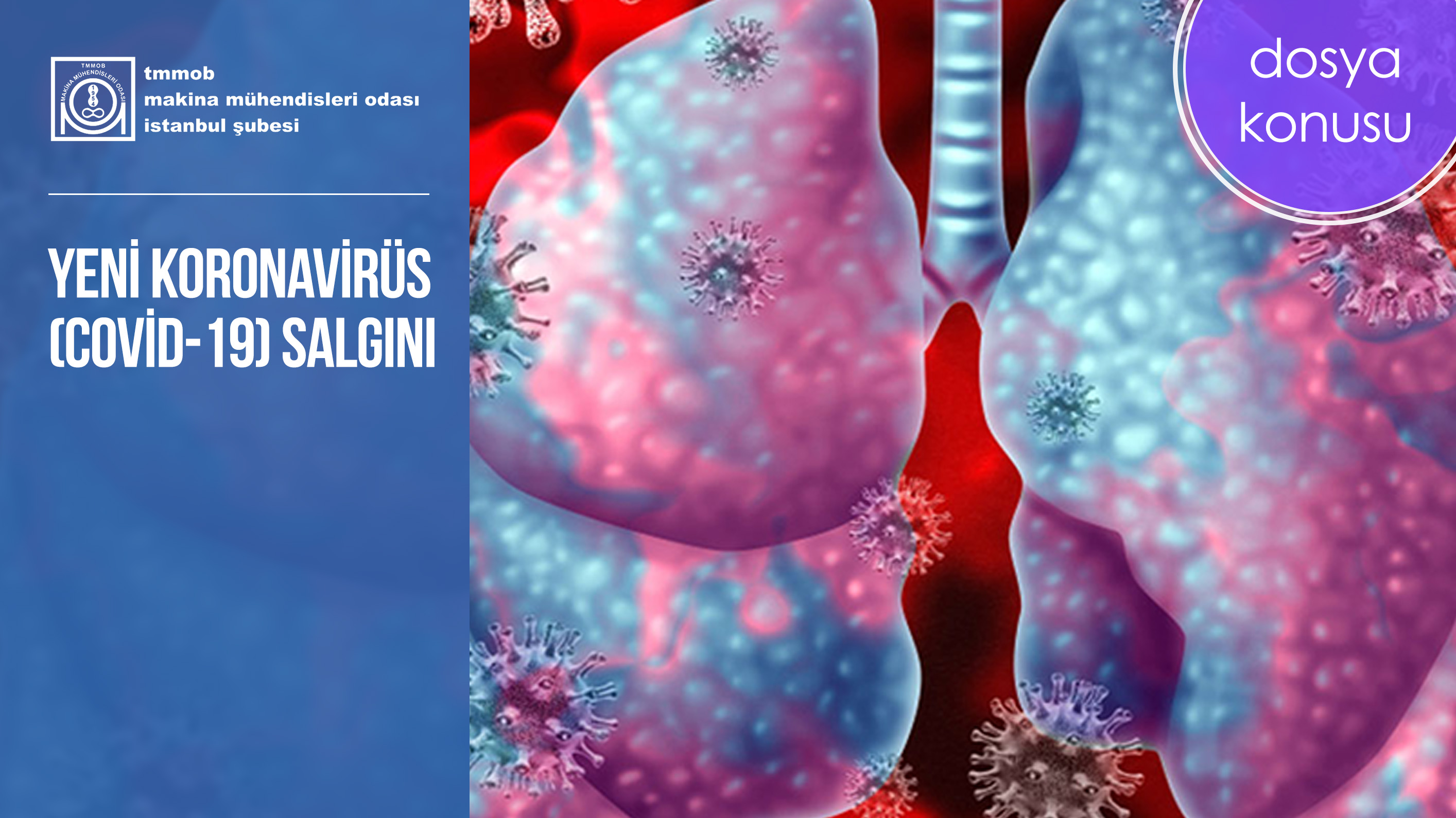 Yeni Koronavirüs (Covid-19) Salgını